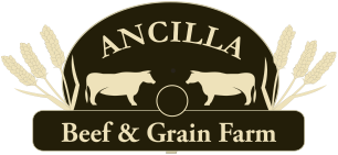 beef and grain logo